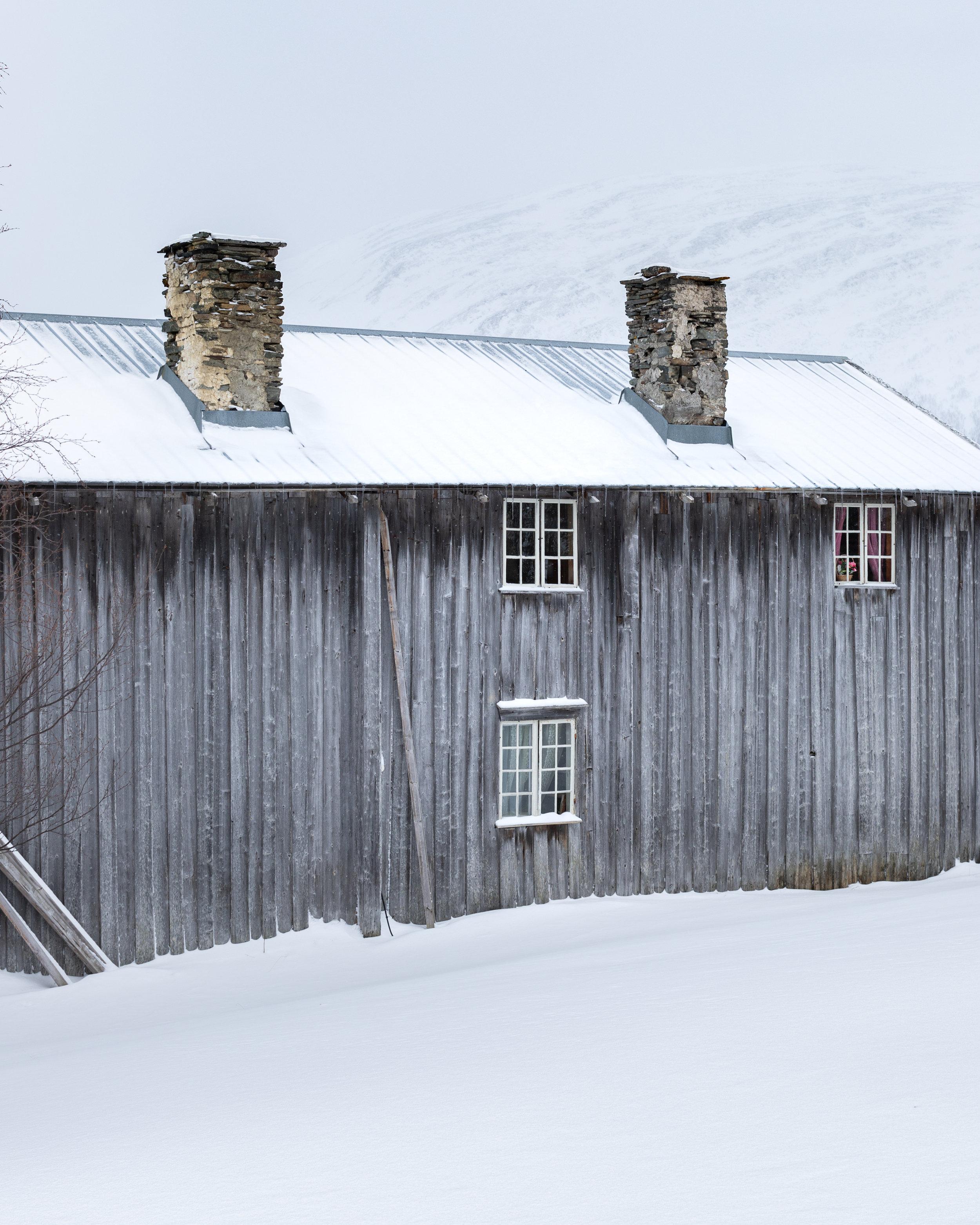 Frosty in Jämtland#2.jpg