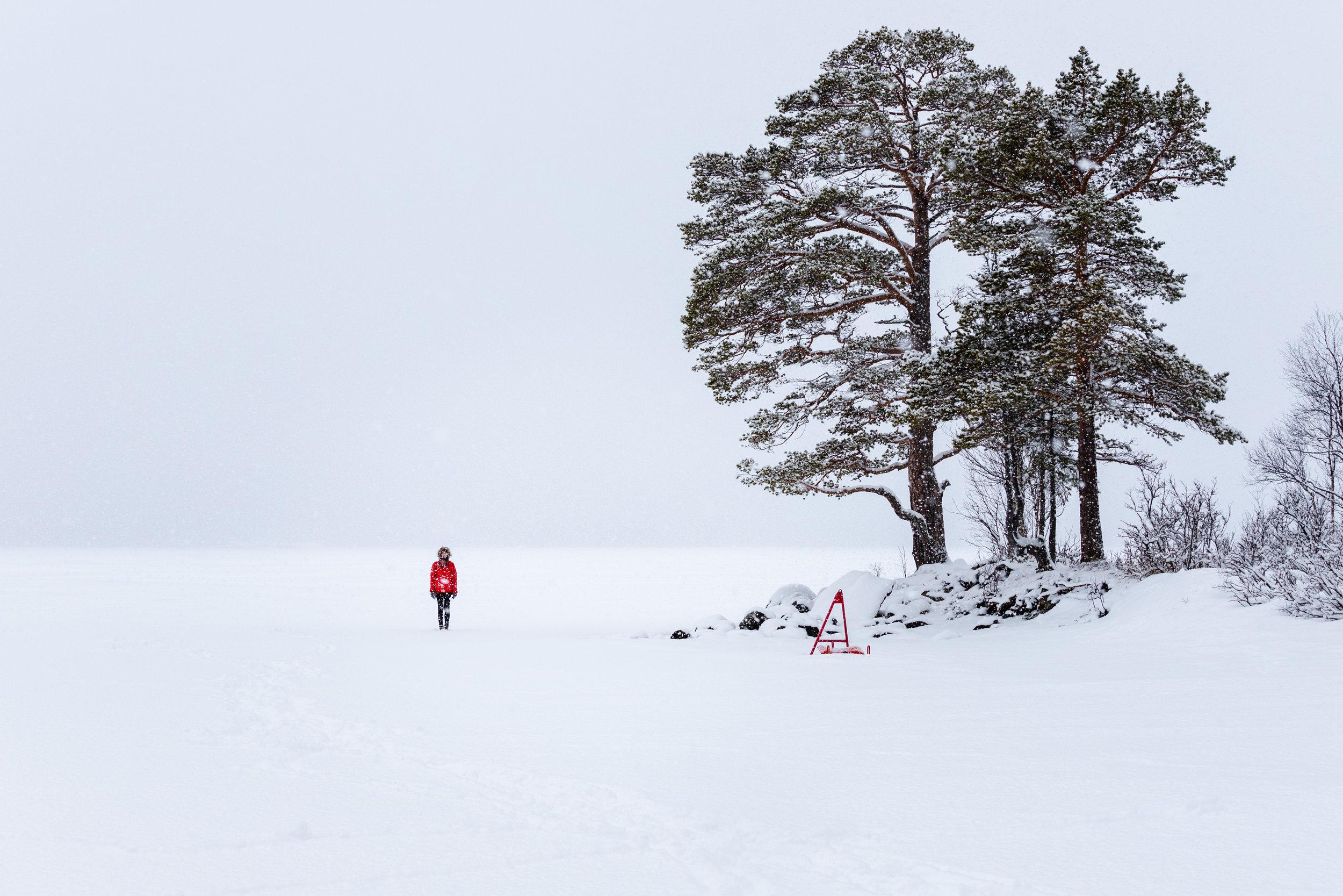 Frosty in Jämtland#5.jpg