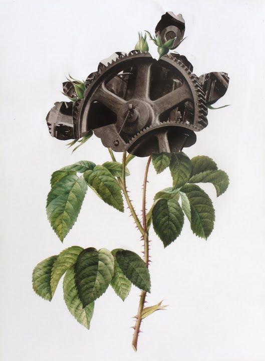 Mechanical Botanical