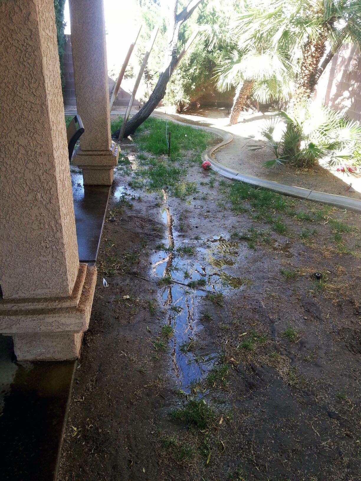 Underground Irrigation Leak