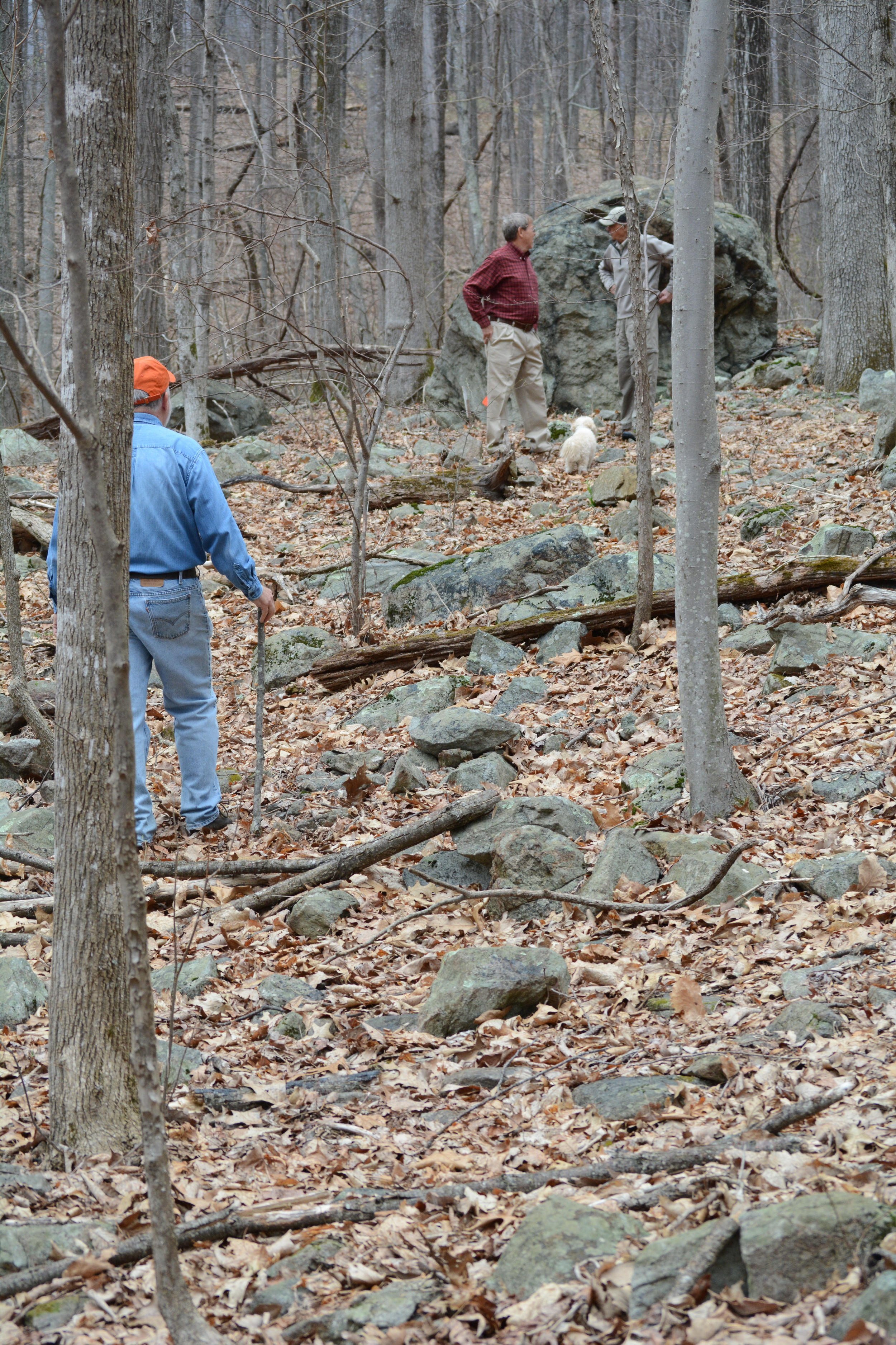 In early spring the field Archery course will be easier to establish. The WSC's goal is to clear the path to make it very easy to walk. (Pictured: Karl Hess (red shirt) talking with Jerry RenDich in late March 2016 as Mike capps surveys what needs to be done to get started.)