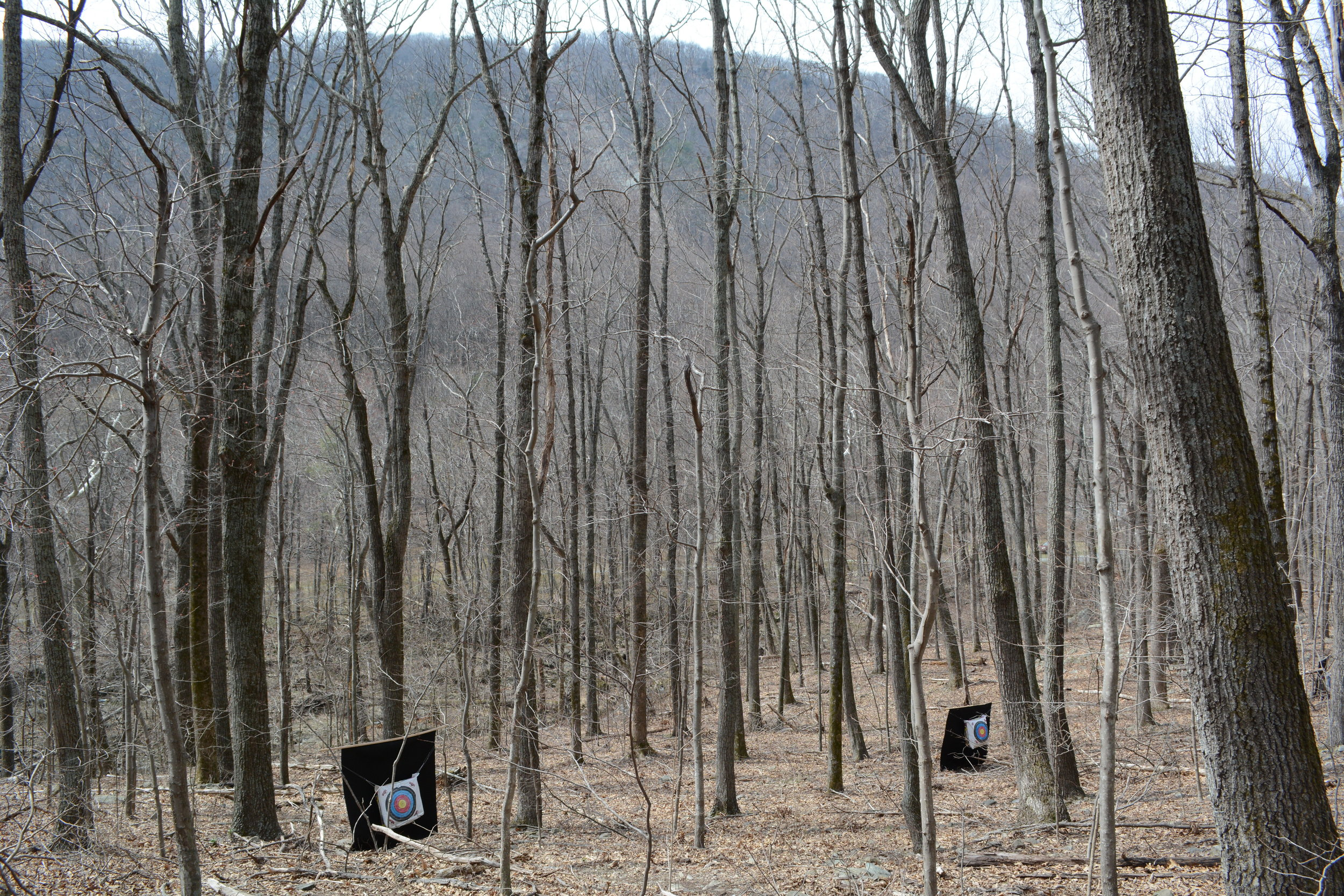 field archery targets-woods-mountains 032517.JPG