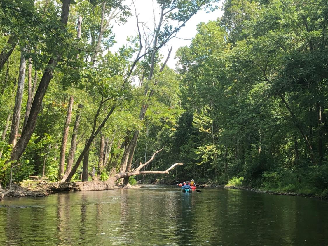 side creek 2a.jpg