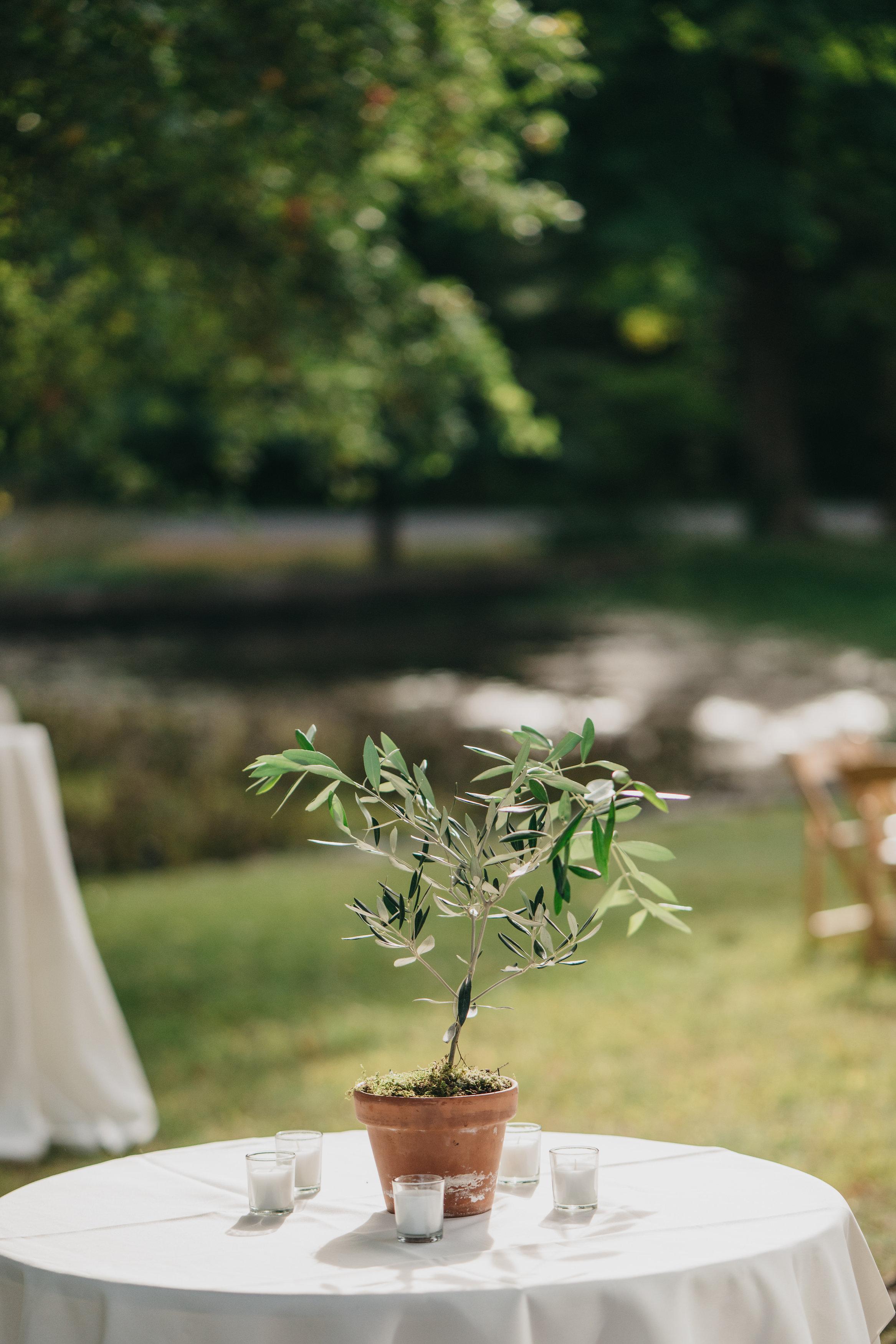 farm_at_pond_lily_wedding0310.jpg