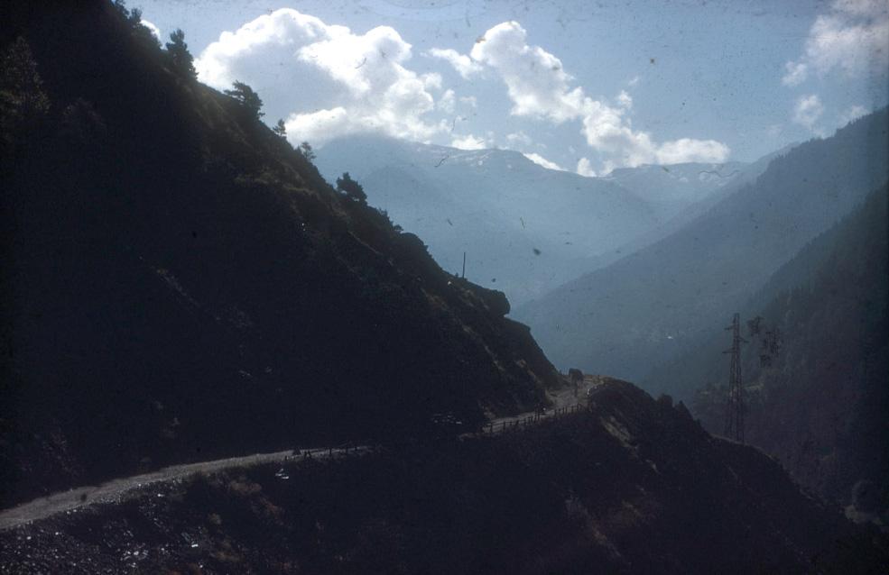 Jumbo on a high mountain trial.