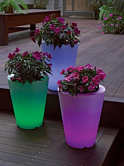 planters, night_opt.jpg