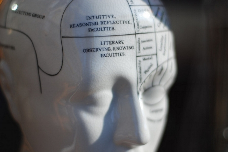 Phrenology, a study of bumps on your head.      Emmet Connolly/Flickr