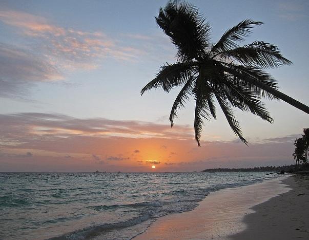 Wishing myself on a beach under a palm tree. — Allen McGregor/Flickr.