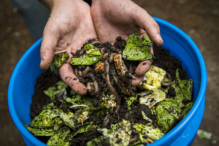 Vermicomposting puts captive worms to work for you. — CAFNR/Flickr