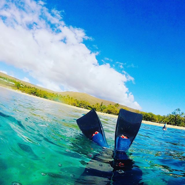 I hate swimming but I love snorkeling... it's like having a portal into a different world! Here are some #betterlatethannever pics from Hawaii, snorkeling off the coast of the island of Lanai, then off the south coast of Maui (where you can see my excitement in spotting a sea turtle), and @_danhendrickson at the famous Molokini crater, an underwater caldera where the walls of the volcano are covered in coral and tropical fish. Want personalized advice for your trip to #Maui? DM or email above 🌺