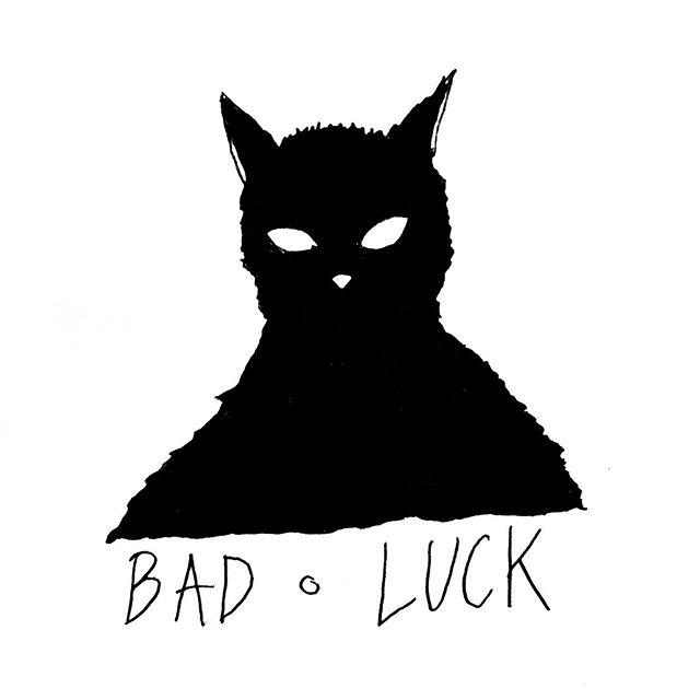 cursed cat
