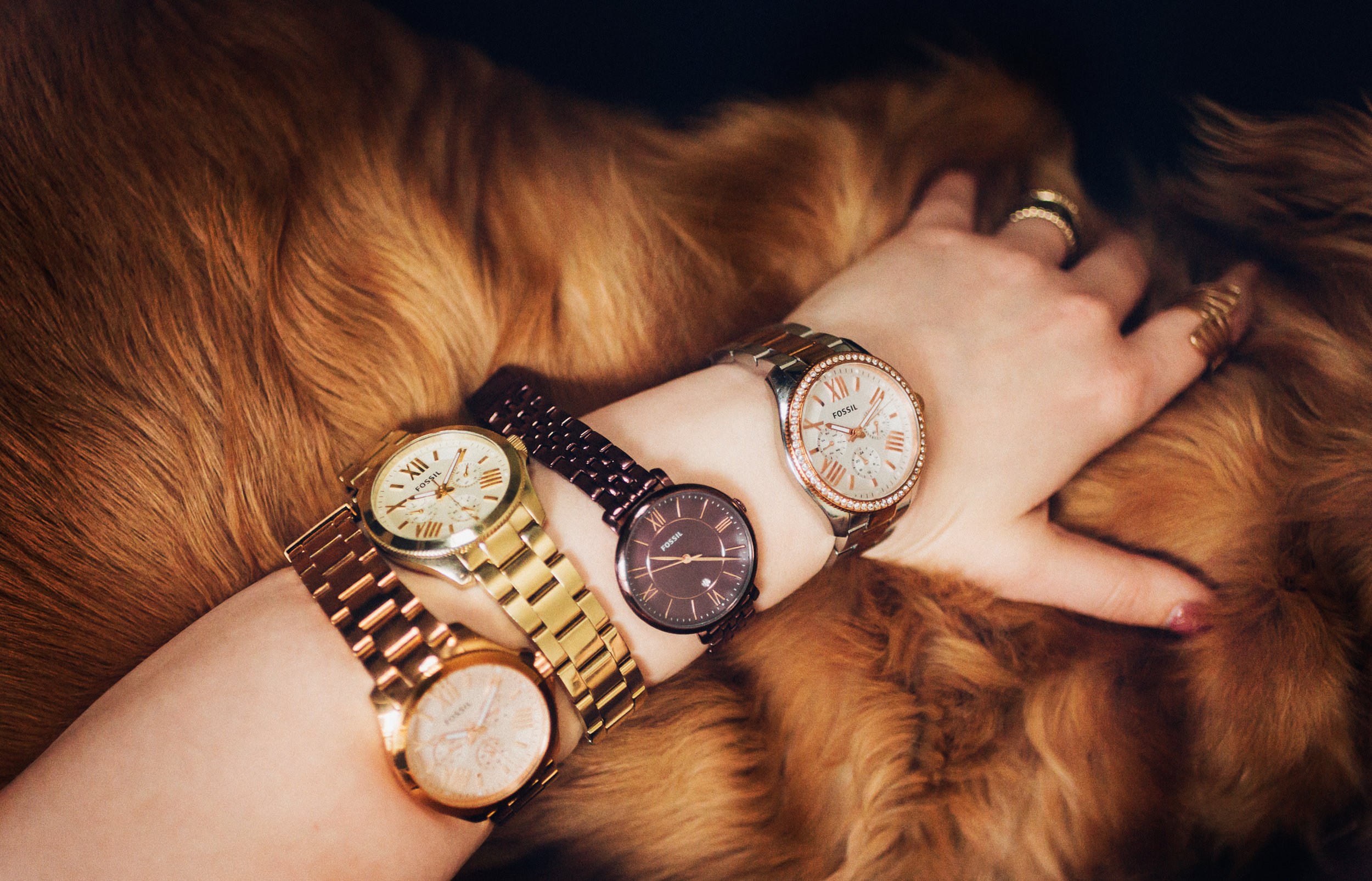 JEWELRY - Whoever said diamonds are women's best friend didn't own a dog.Watches by Fossil.