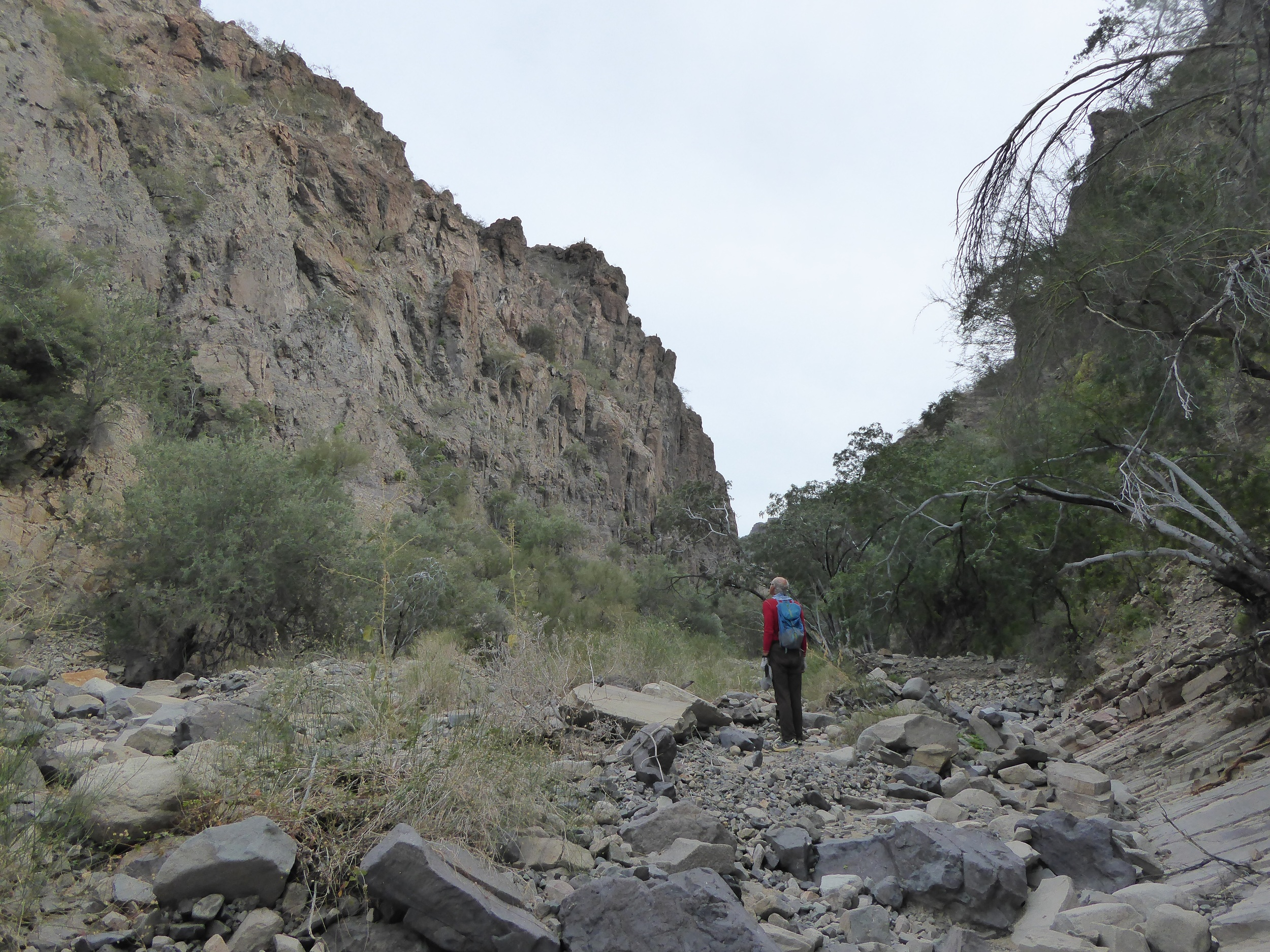 Hiking up the Arroyo