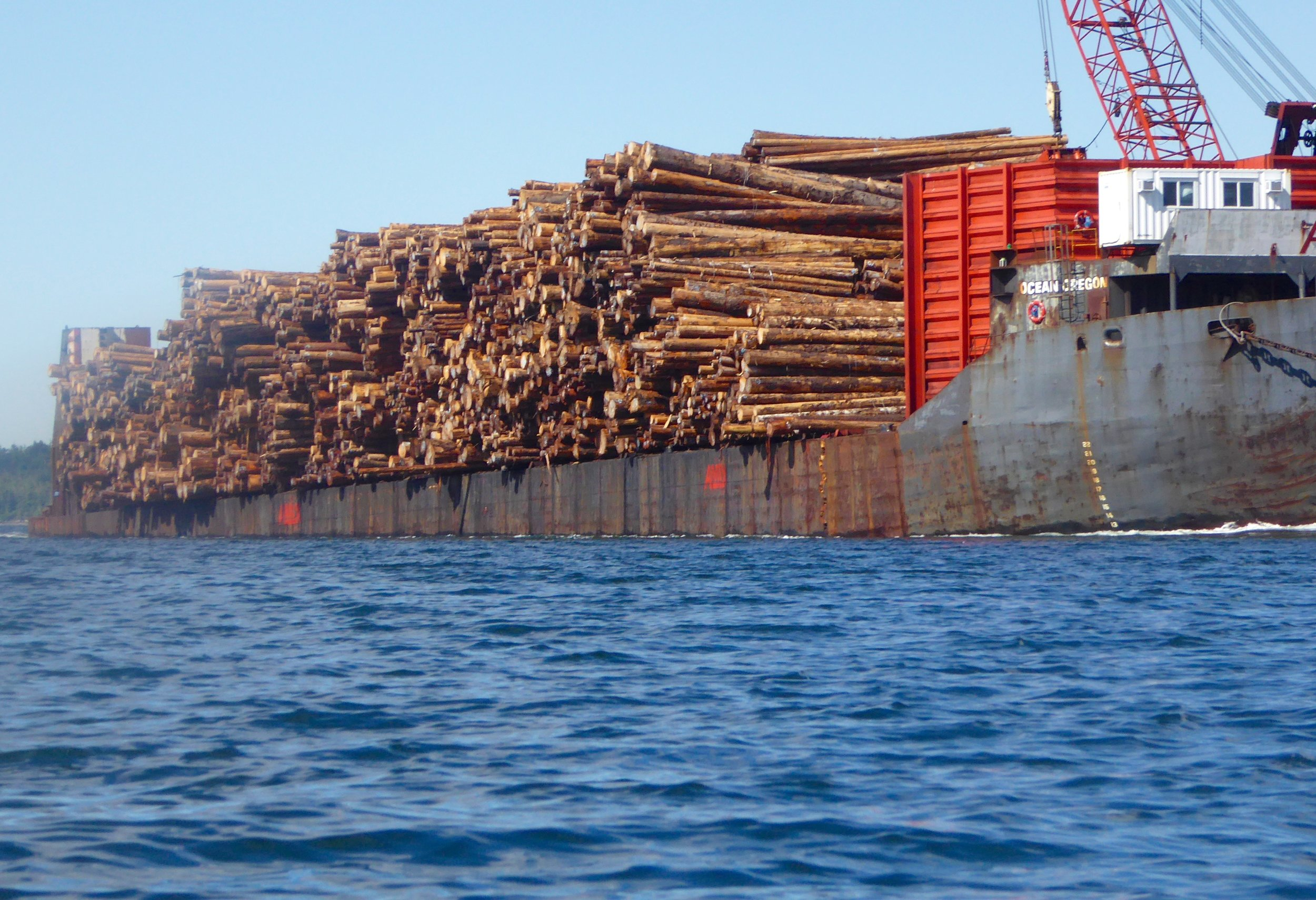Logs on the move has been a common sight.