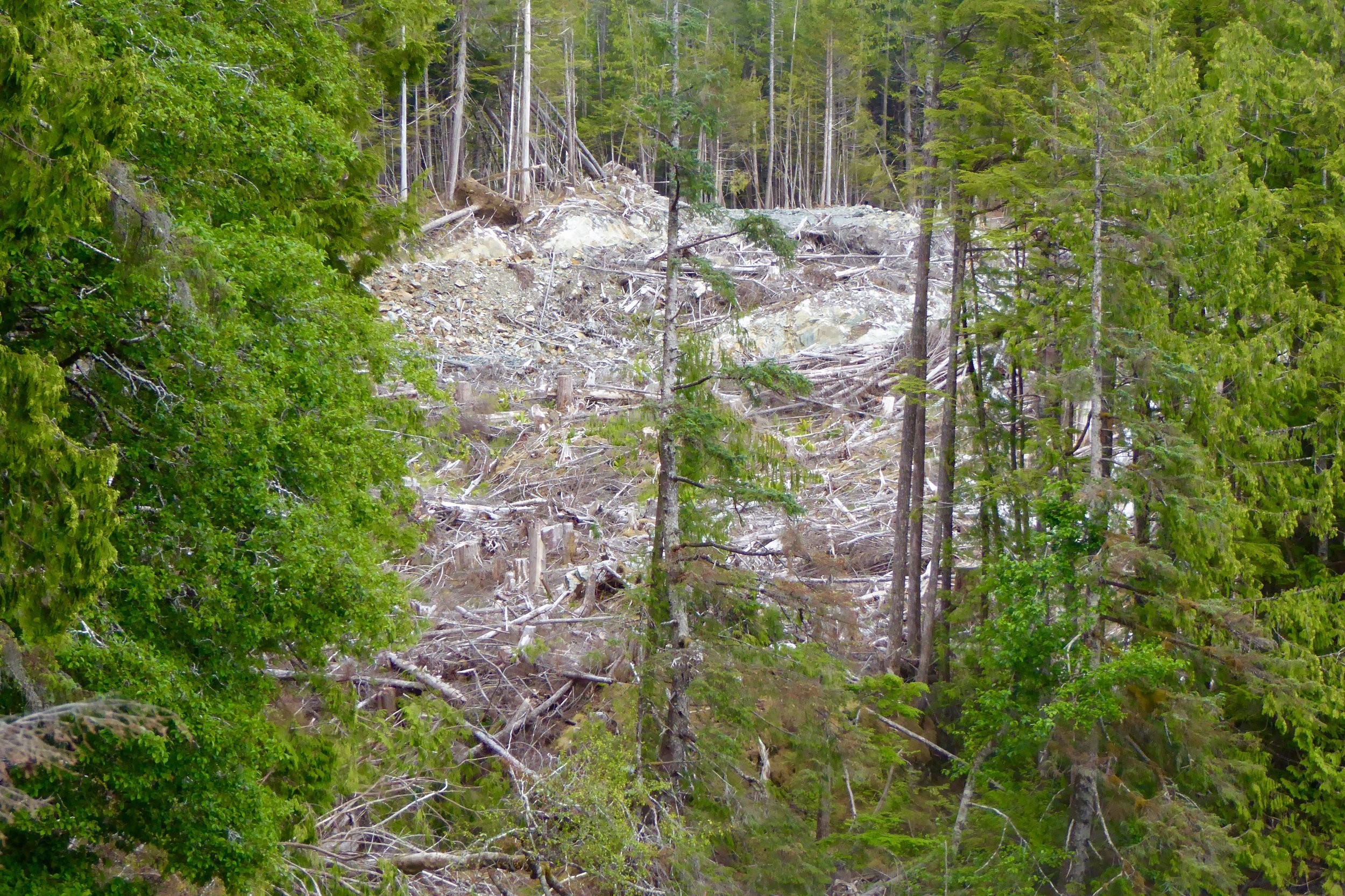 Close by is the logging operation