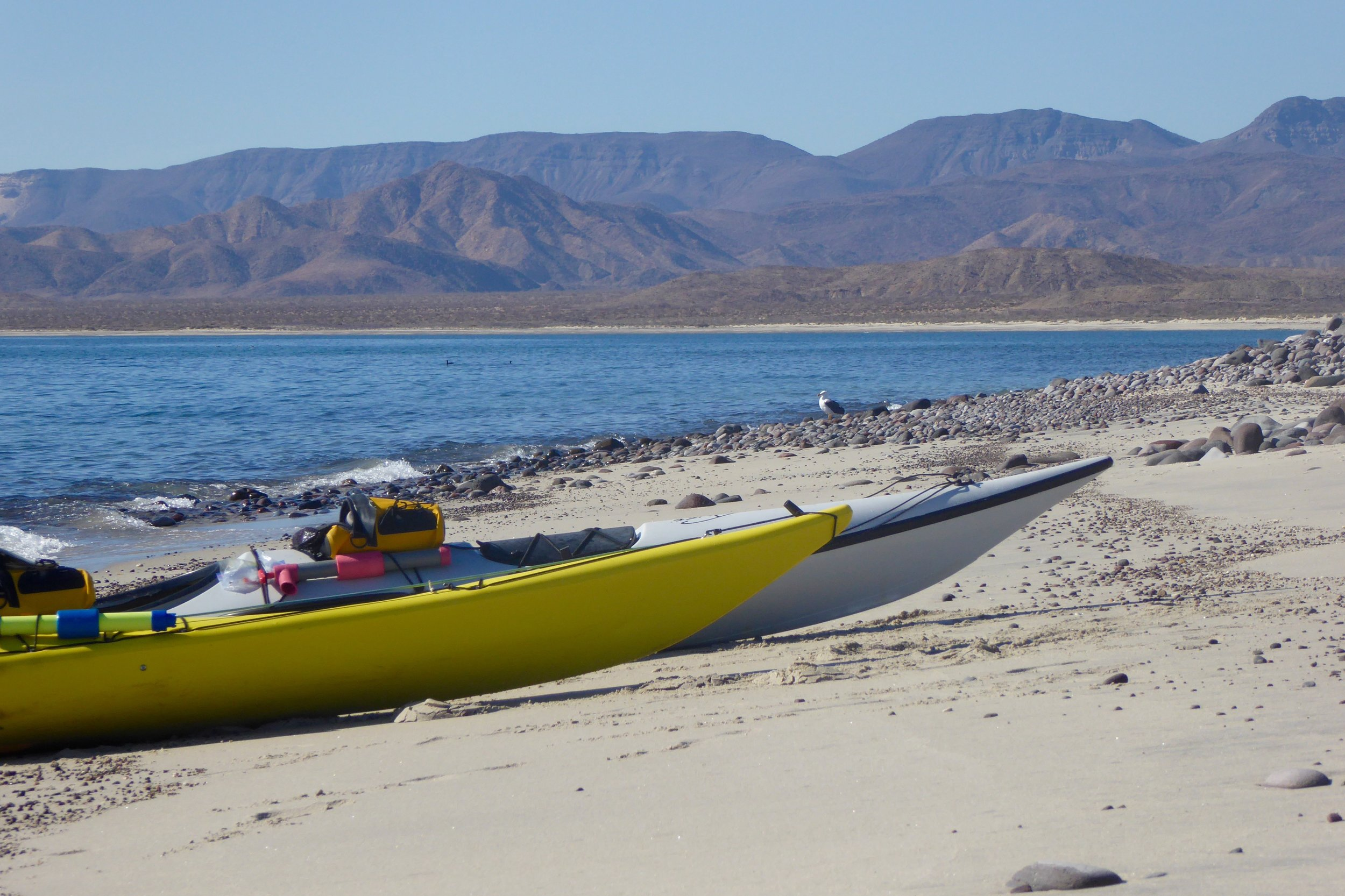The tide was perfect for pulling up our kayaks,