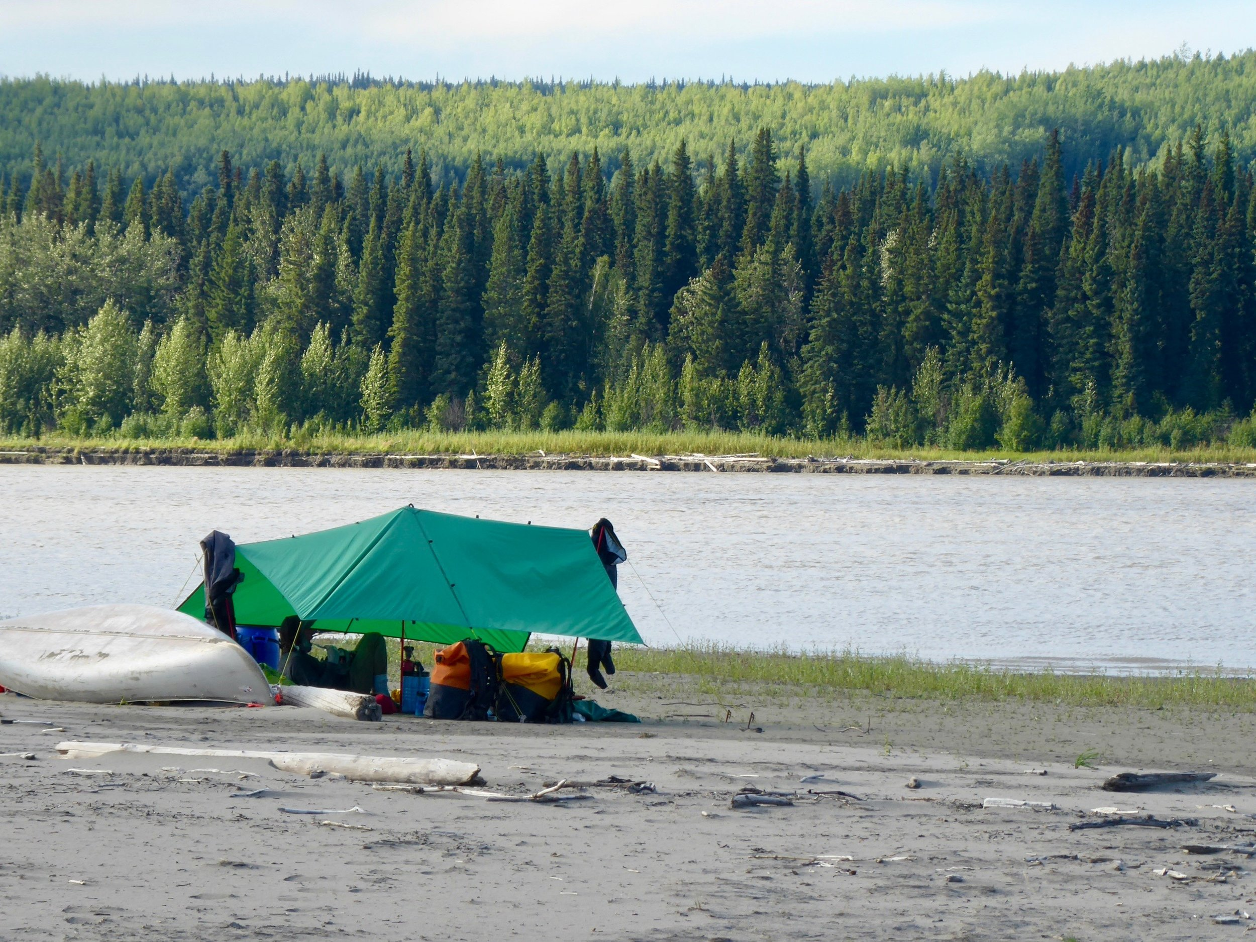 Tent stakes are easily able to be put into the sand.  There are definite different kinds of sand. We will have to experiment which ones are the best for putting the tent on. Today we paddled past the Koyukuk river which flows with a clear color into the Yukon. Upstream a ways is the town of Koyukuk, didn't really want to paddle up stream so passed on by. One of the books that we had read about the Yukon said that near here is the Last Chance Bar. Supposedly the last place one can buy alcohol from here to tBerintg Sea. We didn't see it, but really were not looking for it.  Each village makes their own decision about alcohol. We also met the man who told us about Slop Bucket Jerry. He was coming from the town of Koyukuk and wondered how we were treated in Galena. He also said that more boat traffic than usual was due to a funeral in the village of Koyukuk.  Miles paddled 33  August 8  It was another morning of dew, but the gnats must have gotten their wings wet as well. They were not quite as active. The other reason of their inactivity could been because of the moon. It was so bright last night that they might have stayed active all night.