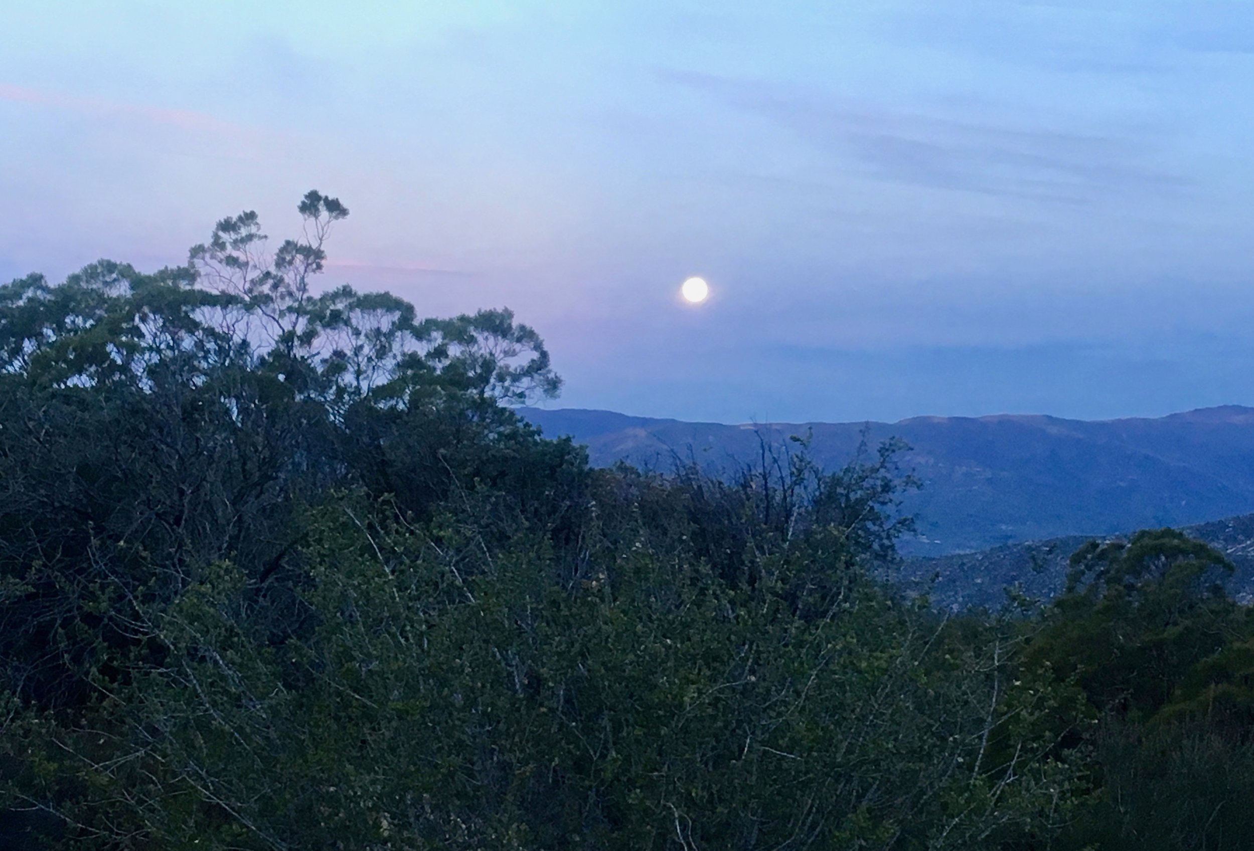 There was almost enough moonlight to hike without our headlamps.