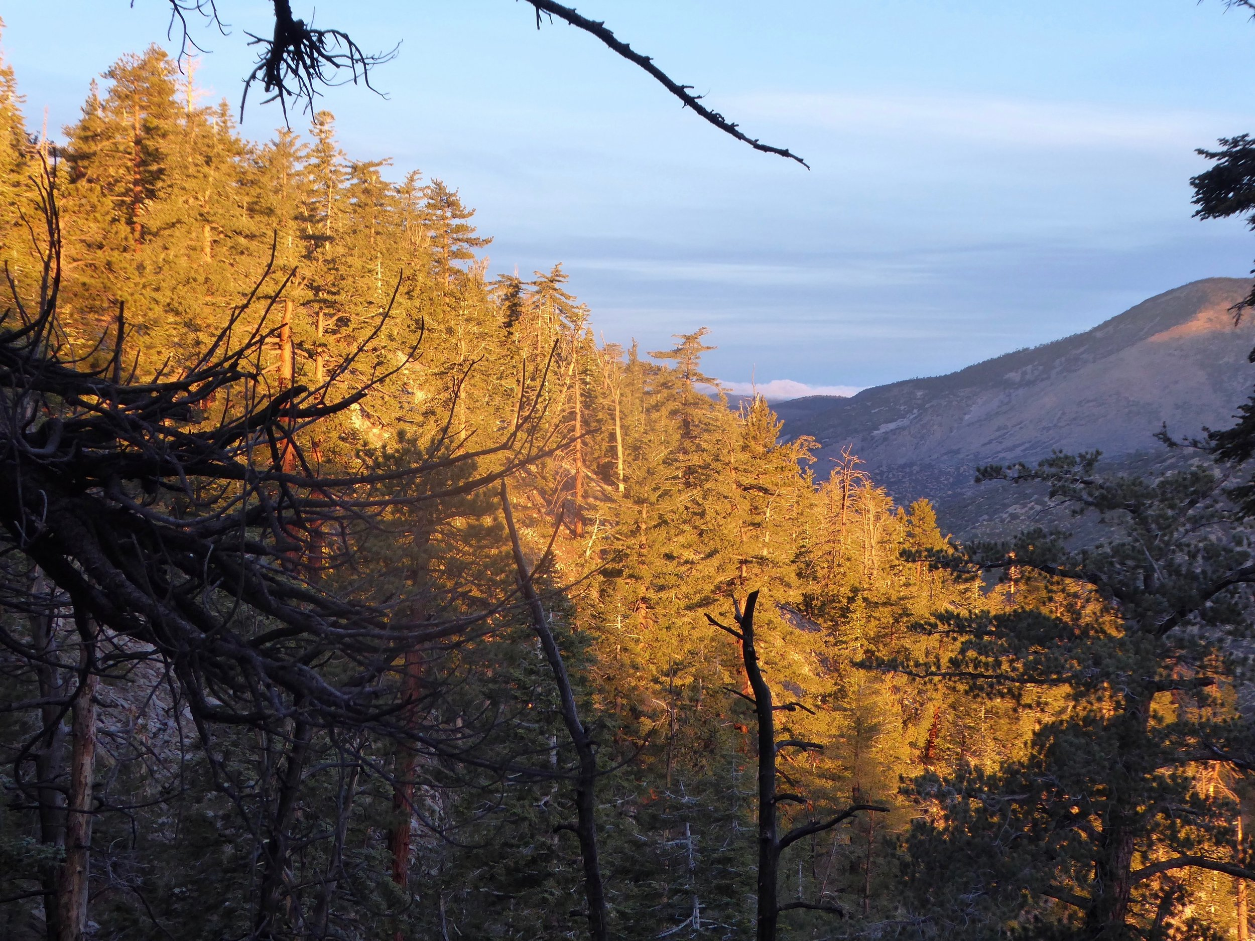 The early morning light was spectacular as well as the fresh snow on the mountain in the distance.