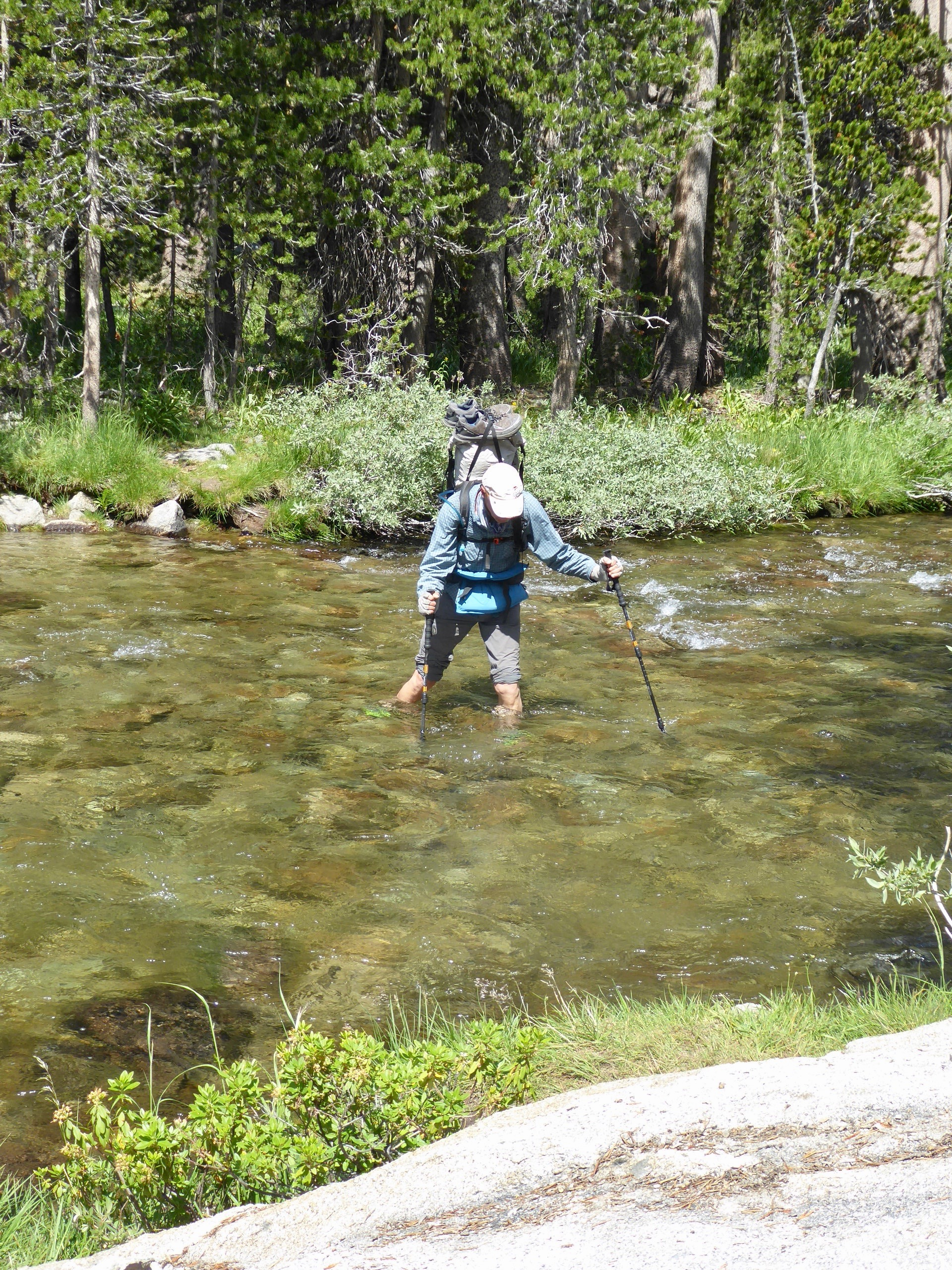 If non are present, the option is to put on wet shoes and go wading. We have been fortunate that none are real deep or have a strong current. A month ago when the snow was melting some streams were almost impossible to ford.