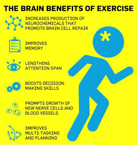 Positively impacts brain function.