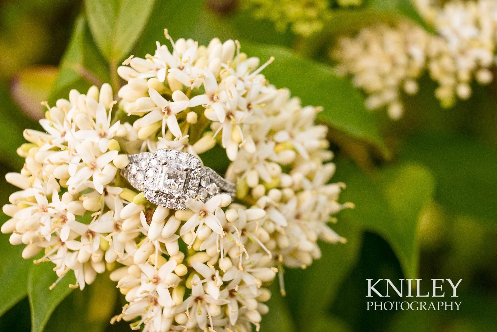033 - Webster Arboretum Engagement Picture -XT2B3018.jpg