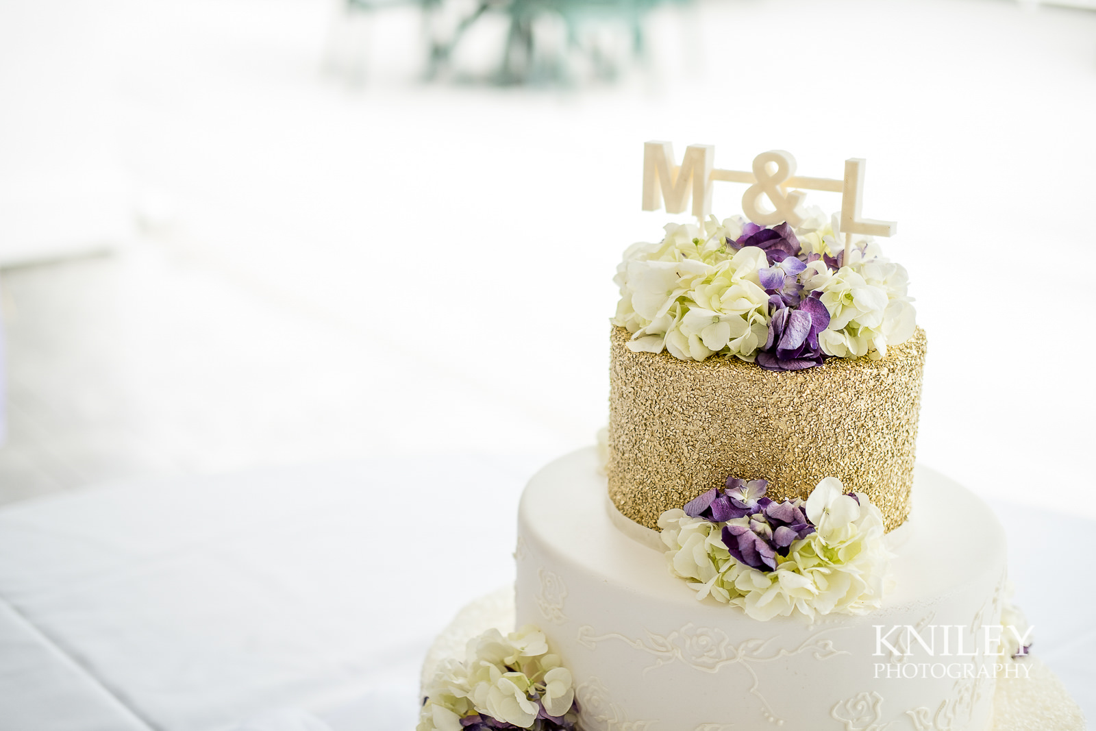 088 - Klocs Grove Buffalo NY Wedding Pictures -XT2B8813.jpg