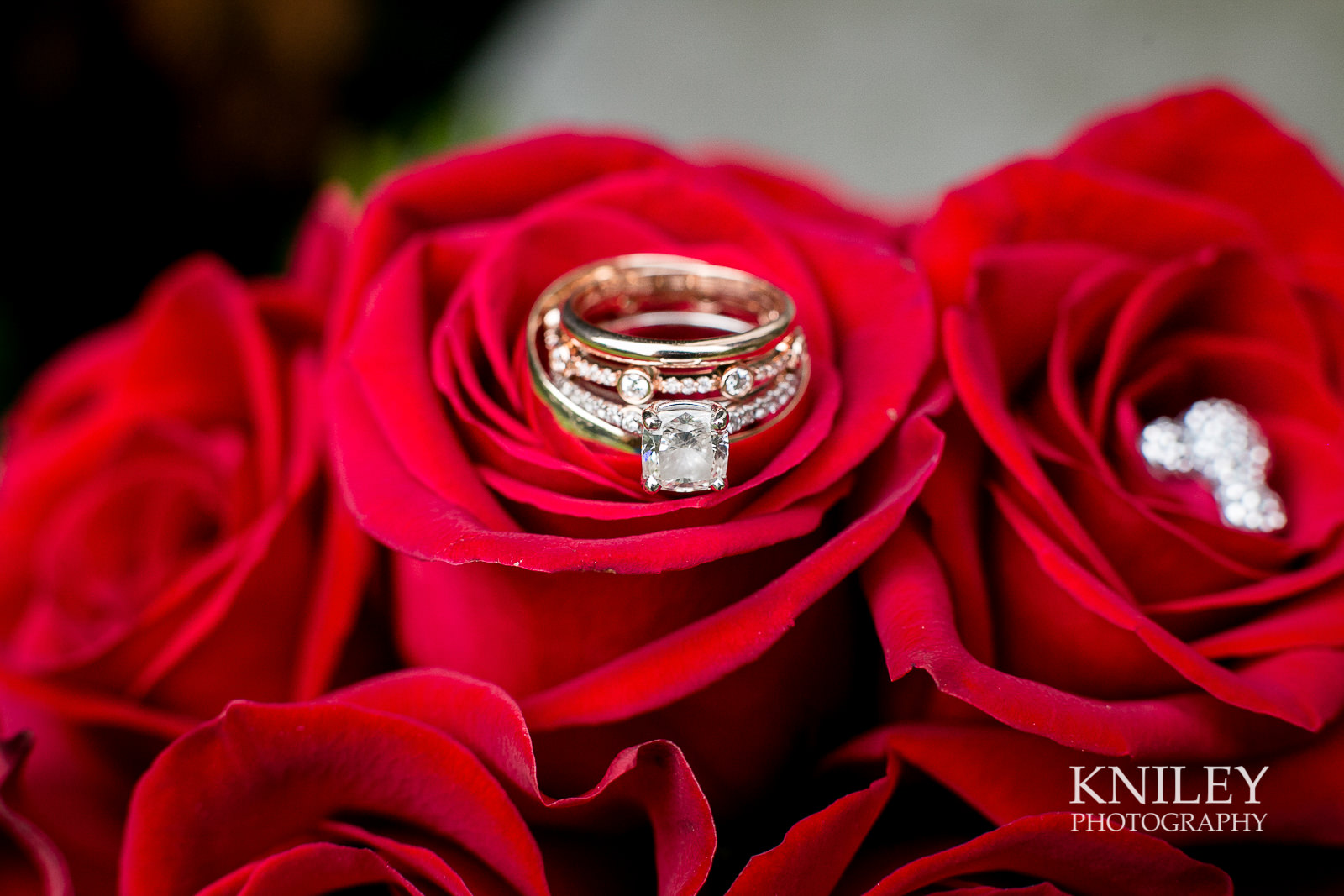 101 - Rochester NY wedding pictures - Genesee Valley Club - Ceremony and Reception - IMG_6604.jpg
