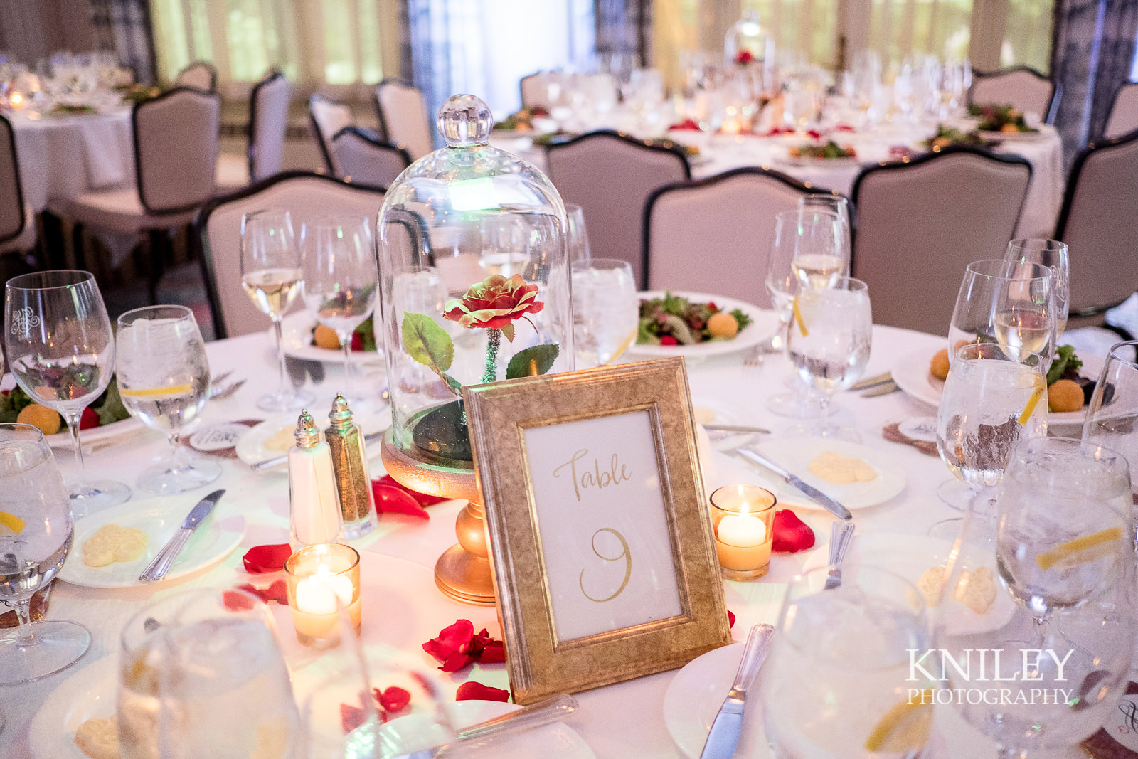 106 - Rochester NY wedding pictures - Genesee Valley Club - Ceremony and Reception - XT2B7025.jpg