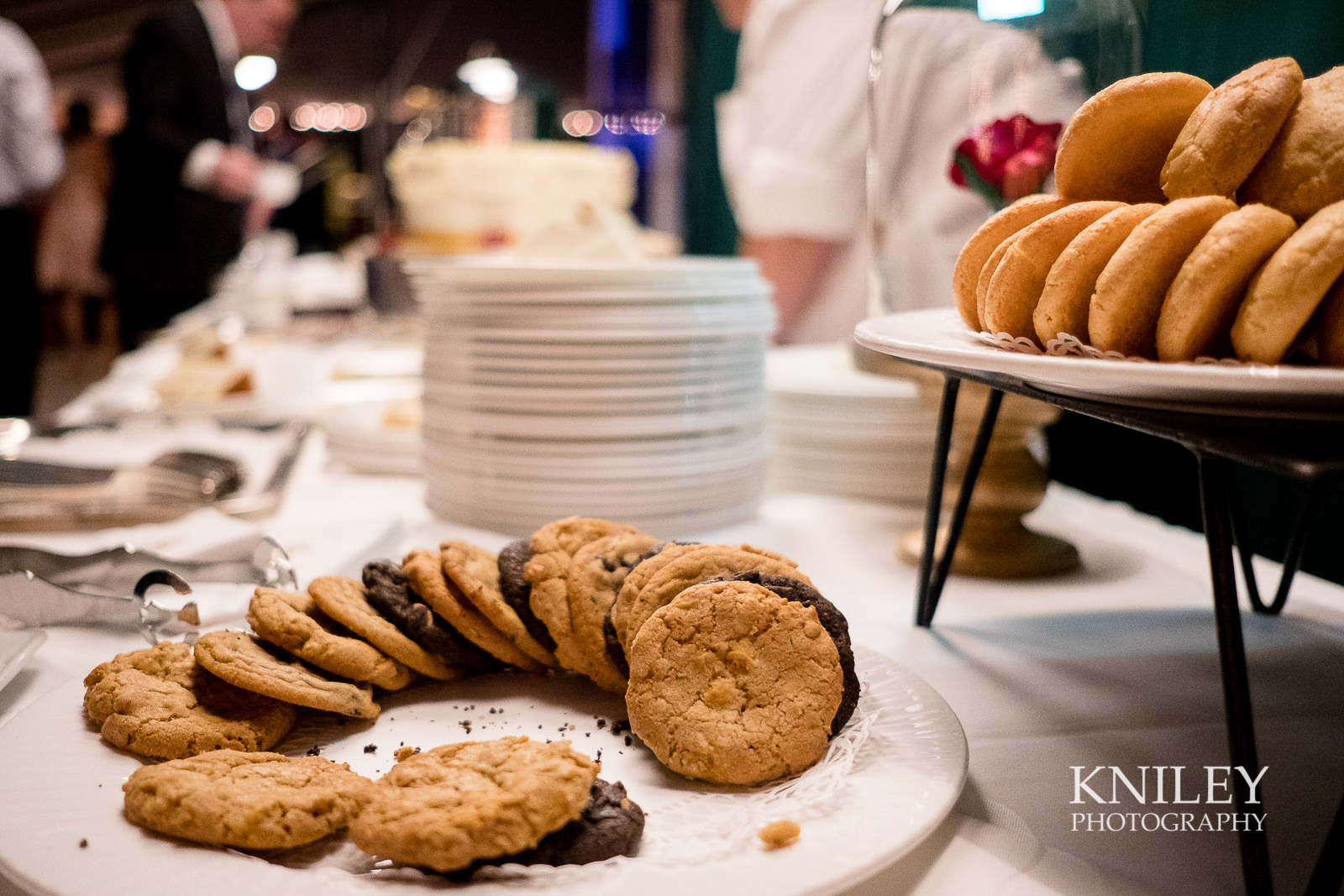 142 - Rochester NY wedding pictures - Genesee Valley Club - Ceremony and Reception - XT2A6225.jpg