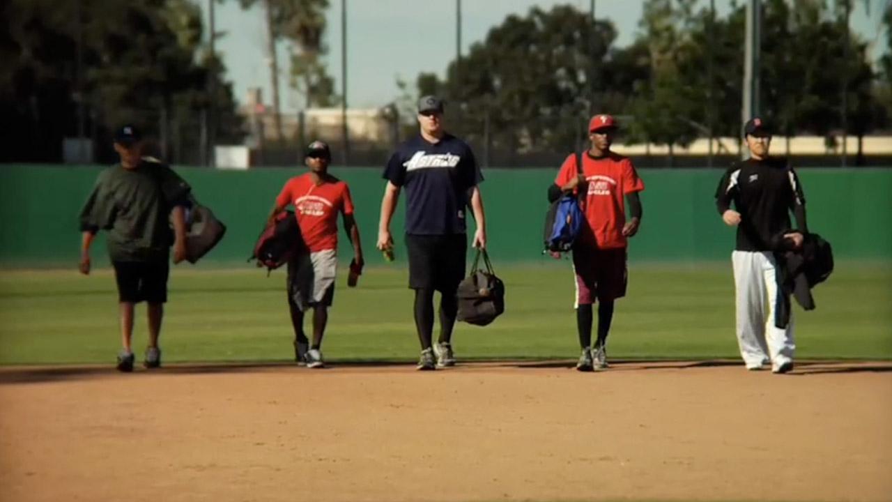 """Baseball """"Coulda Shoulda Woulda"""" pitch ;)"""