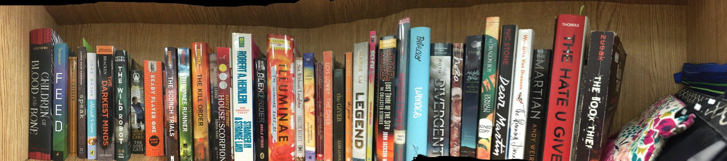 bookshelf panorama.JPG
