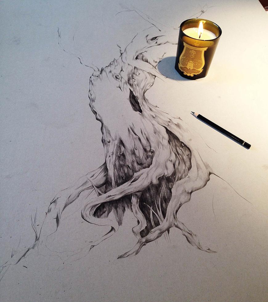 1_tree_botanical_pencil_sketch_Kelly_thompson_art_illustration_drawing_illustrator_blog.jpg