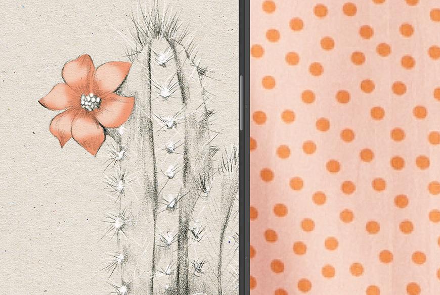 2_Kelly_thompson_Ruby_dreamers_illustration_cactus.jpg