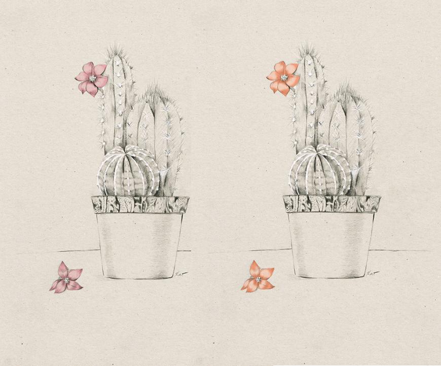 4_Kelly_thompson_Ruby_dreamers_illustration_cactus.jpg