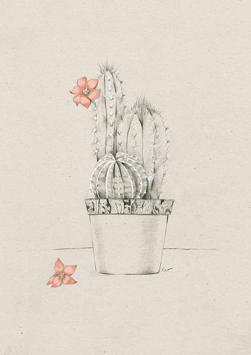 final_Kelly_thompson_Ruby_dreamers_illustration_cactus.jpg