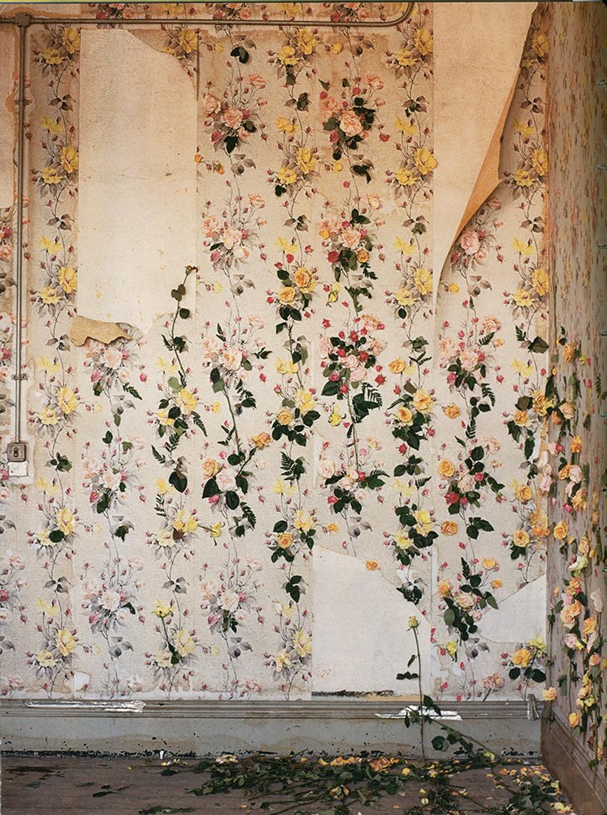 Kelly_thompson_blog_rose_wallpaper_peeling.jpg