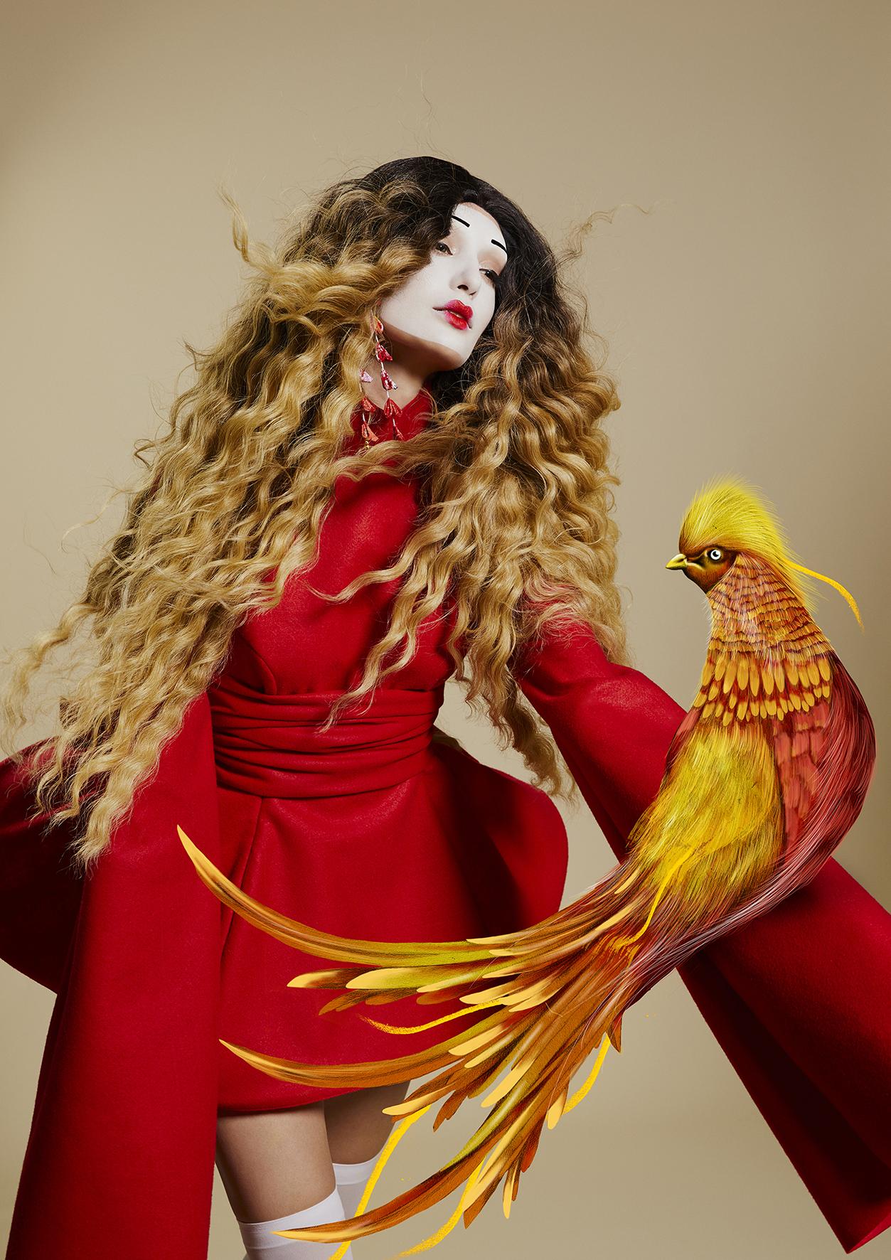 bird Kelly Thompson D&M salon illustration Illustrator Melbourne