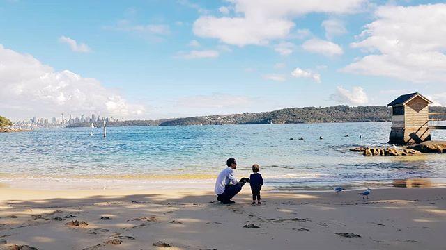 Watson's Bay 🐳