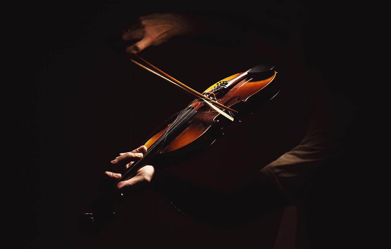Fiolin-40223.jpg