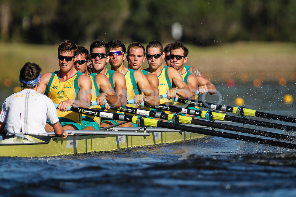 Australian Rowing Olympic Trials, March 2012,