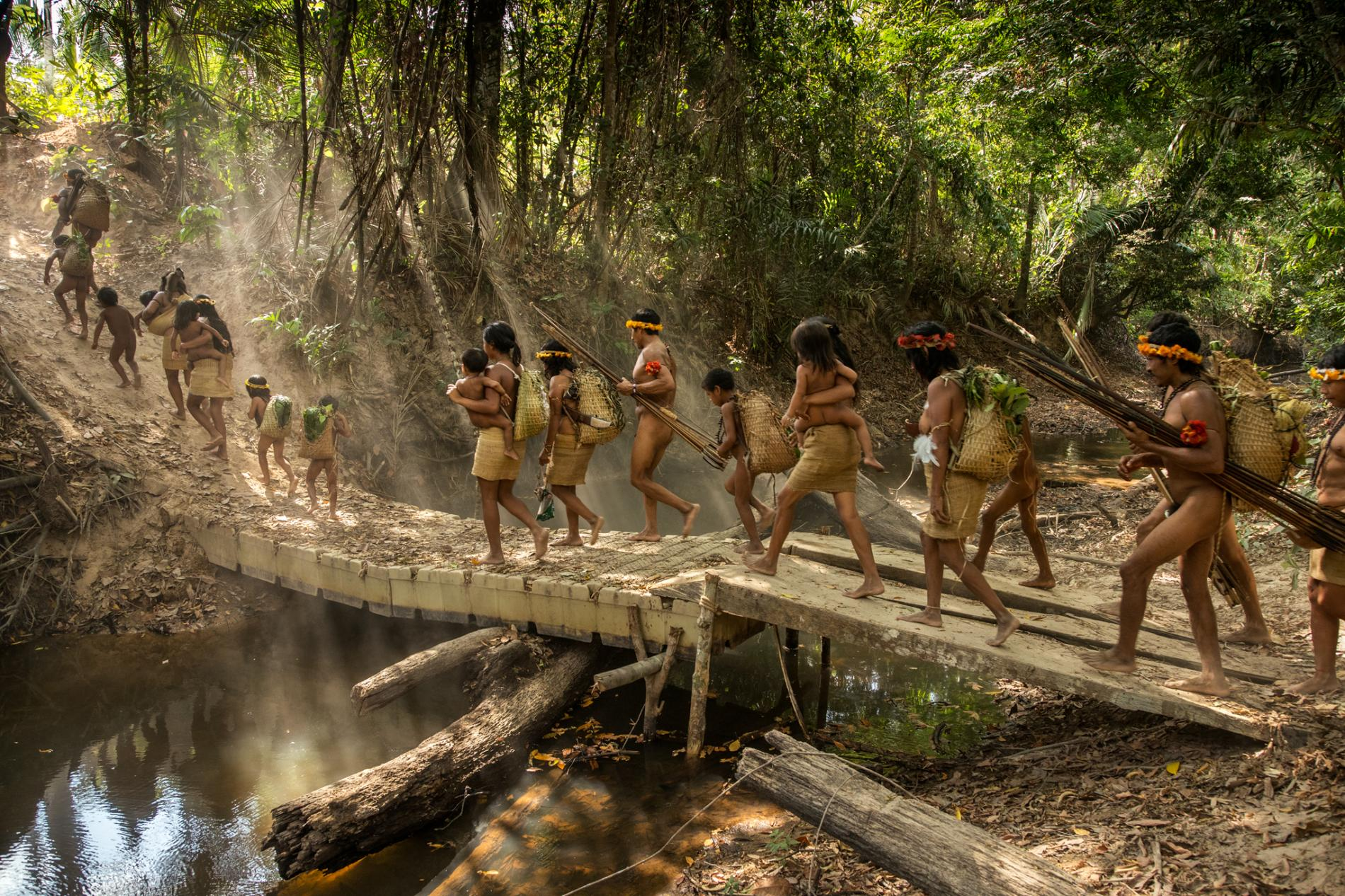 Threatened Amazon, Awa family living in the forests.