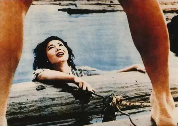 大岛渚《青春残酷物语》    「青春残酷物语」的题名取自于大岛渚的同名电影,是出于致敬,但却并不代表本特集只局限于某一种风格和类型当中。青春的电影和电影里的青春都纳入所推荐范围之内。