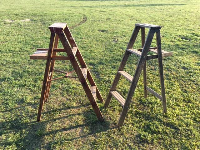 Short Ladders~Rental $10 each