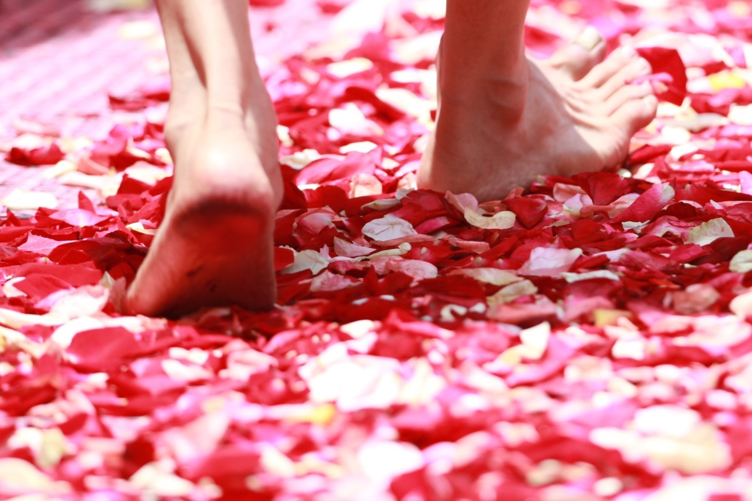 barefoot-ceremony-colors-50681.jpg