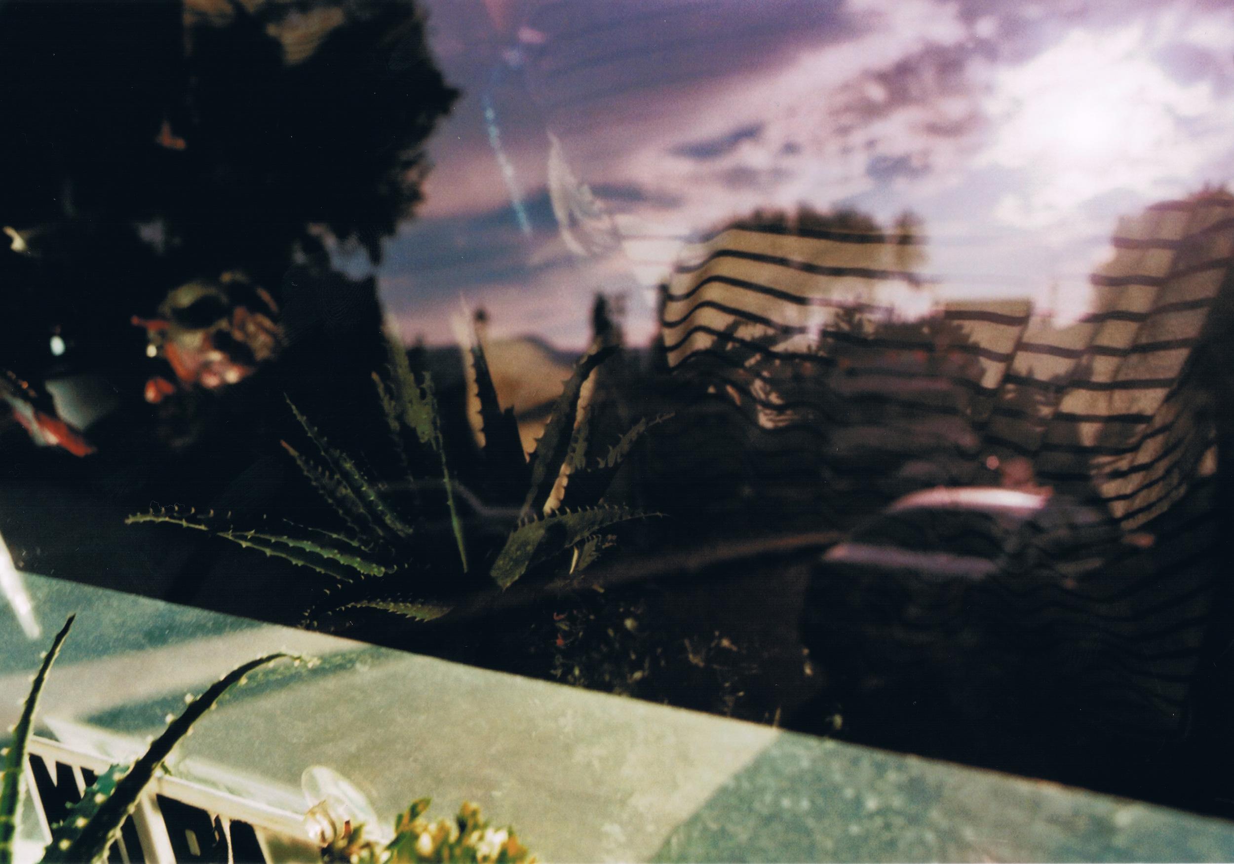 frida und ihre spiegelung vor streifen und lila licht.jpeg