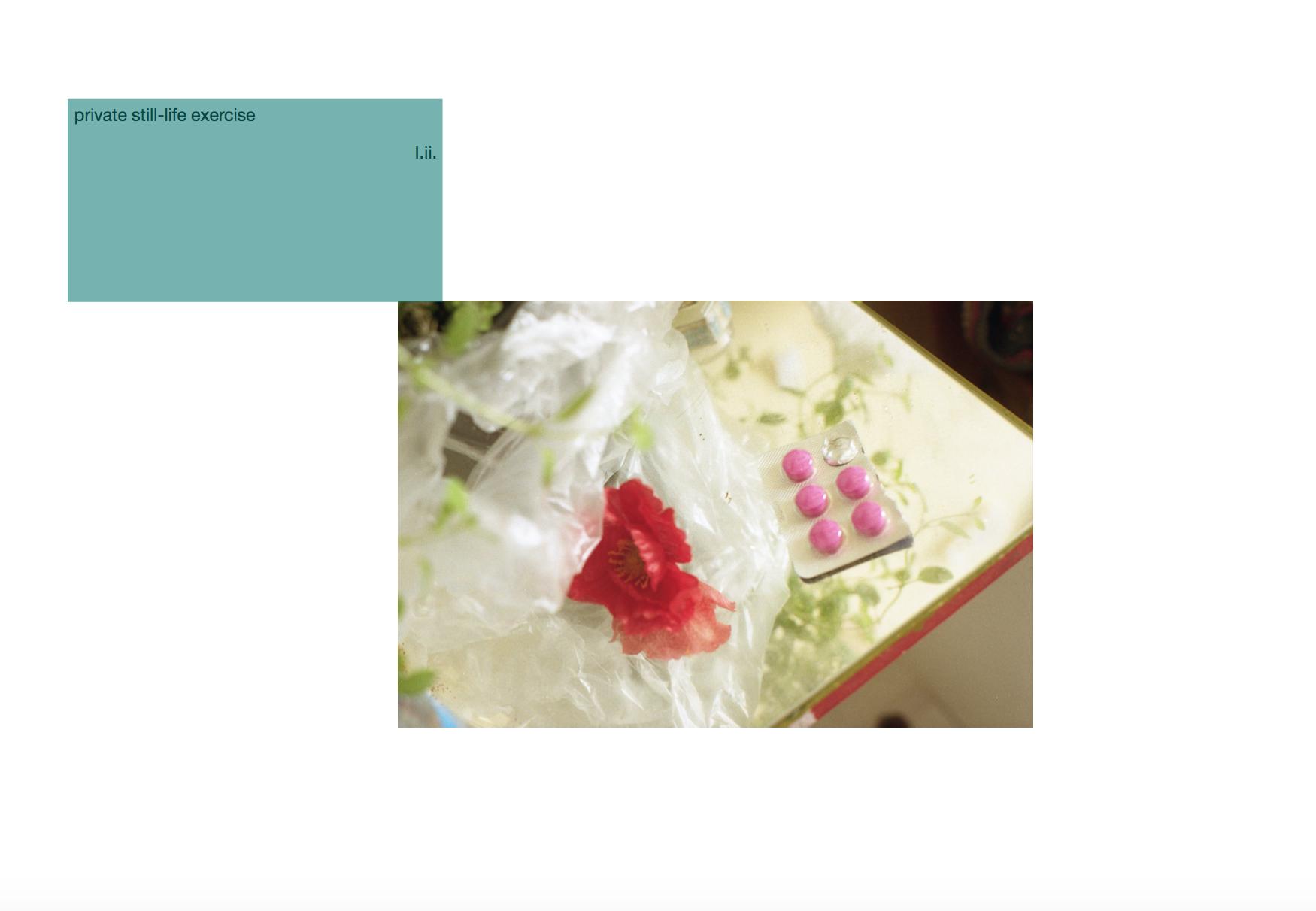 Screen Shot 2019-03-01 at 15.47.09.png
