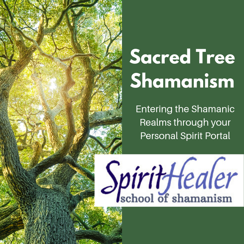 Sacred Tree Shamansim1 (2).png