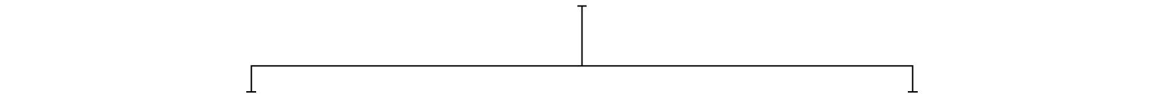 BS001_Squarespace_2.jpg