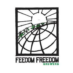 feedomfreedom_web.jpg